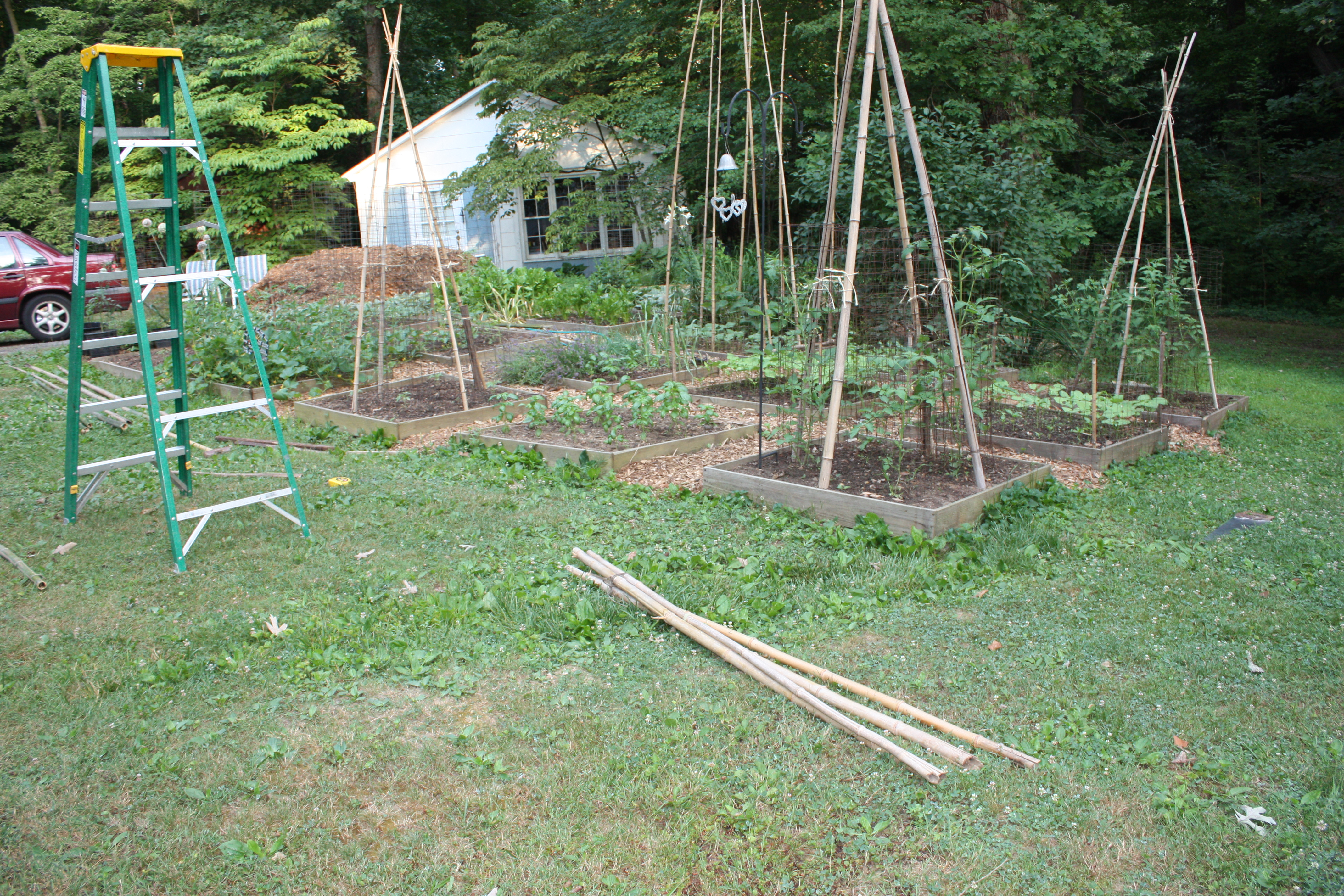 bamboozling how to build a bamboo trellis let s face the music supplies