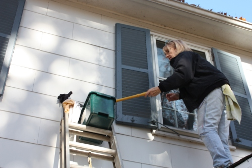Brush the dishwasher detergent and water mixture on the windows