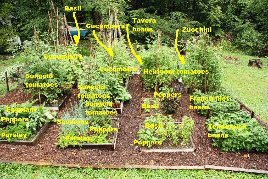Potager Garden Layout Plans Awesome Find This Pin And More On
