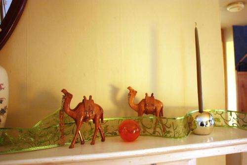 Carved wooden camels