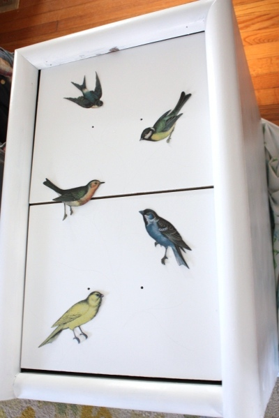 I chose 5 birds similarly sized birds to feather the front of the file cabinet.