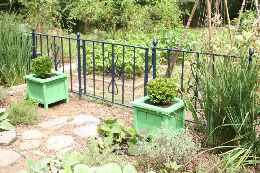 The planters are at the entrance to the potager on either side of the iron gate.