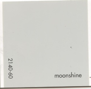 Benjamin Moore's Moonshine for the mudroom walls.