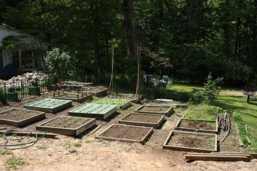 The garden was just starting to grow before we left.