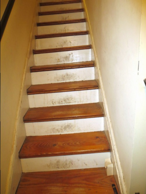 These are the stairs that really need rejuvenating.