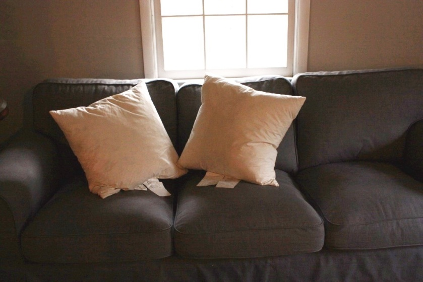 Two 20-inch Ikea feather pillow inserts.
