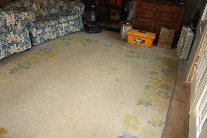 Muddy areas on the edges and dark stains were all over the rug.