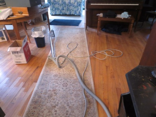 I set up the rug shampooer in the dining room because it's convenient to the kitchen faucet.