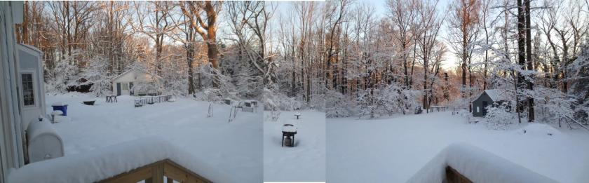 I joined 3 photos to get one view of the back yard.