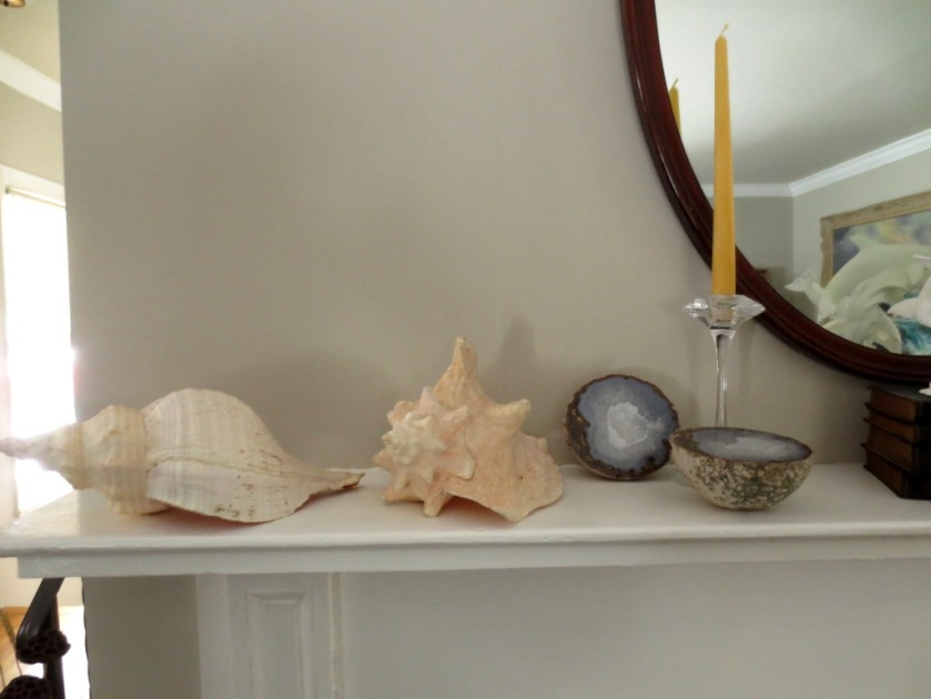 Conch shells and a geode.
