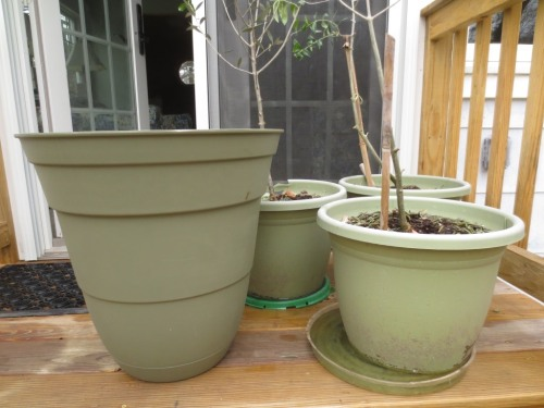 The pots are a greyish green color.