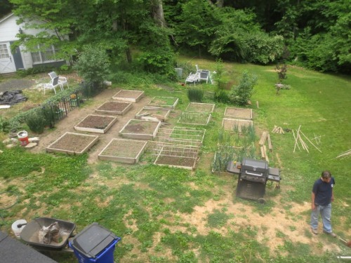 The kitchen garden is relegated to the sunniest space in the heavily-shaded yard.