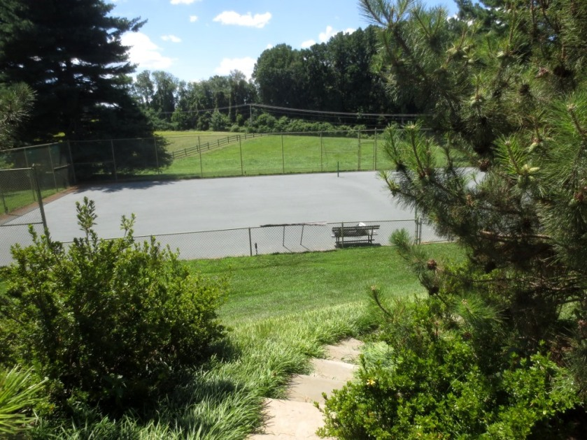 A bluestone path at the side of the pool house leads to the tennis court.