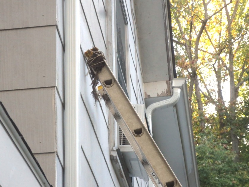 The extension ladder covers will help protect the house from the sharp edges of the ladder.