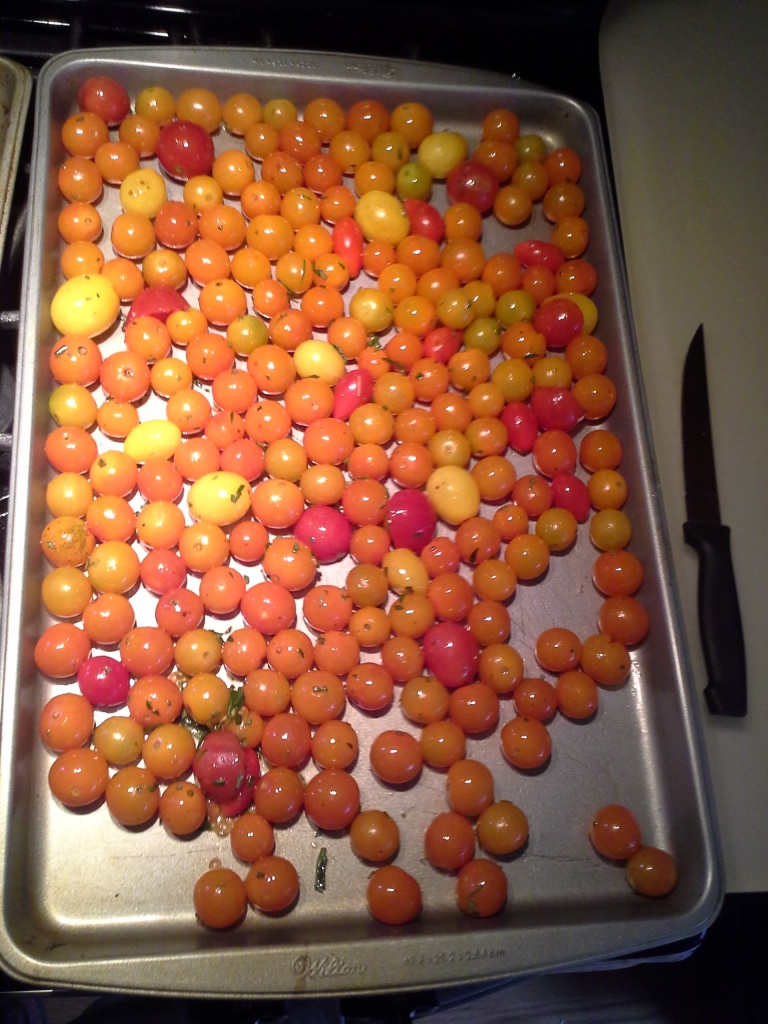 Oiled tomatoes and rosemary on a baking sheet.