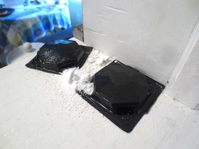 The black trays are ant bait traps and the white powder is a mixture of powdered sugar and borax.