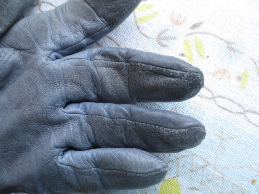 My blue gloves are from Lands' End and I had them for about 10 years.
