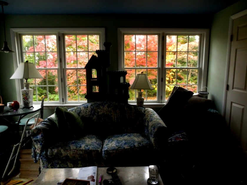 The fall color is stunning viewed from the conservatory. I could sit and enjoy it all day.