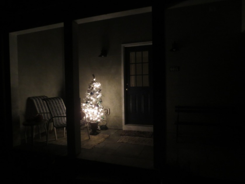 This small Christmas tree sits on our side porch.