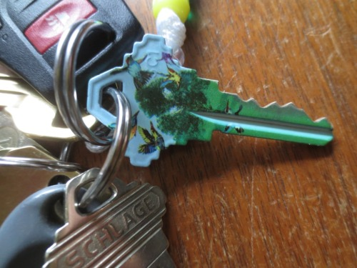 My blue and green house key with hummingbirds -- easy to distinguish from the others.