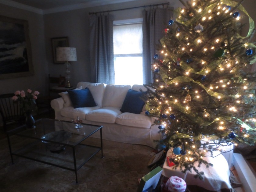 One last shot of our 2015 Christmas tree in living room.