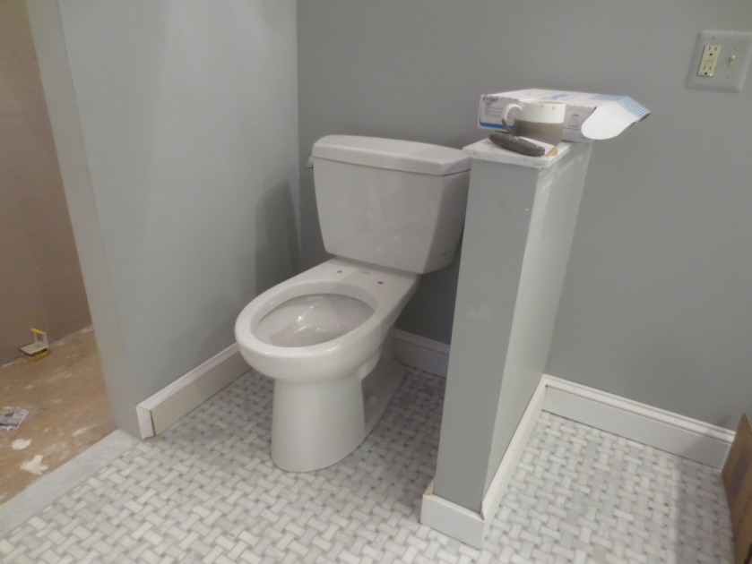 Our toilet came without seats.
