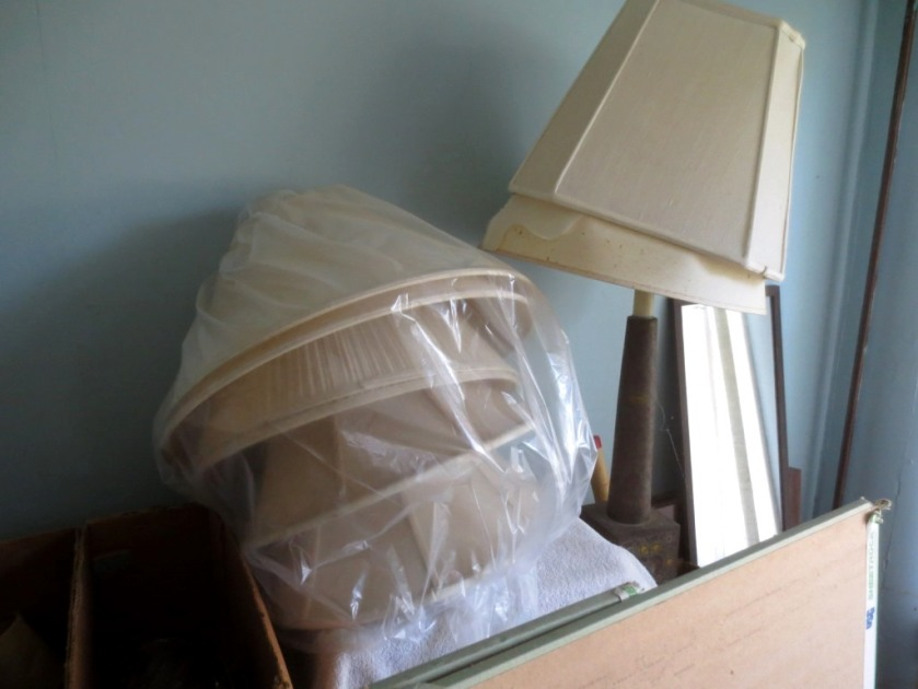 Can anyone think of a reason to keep these lampshades?