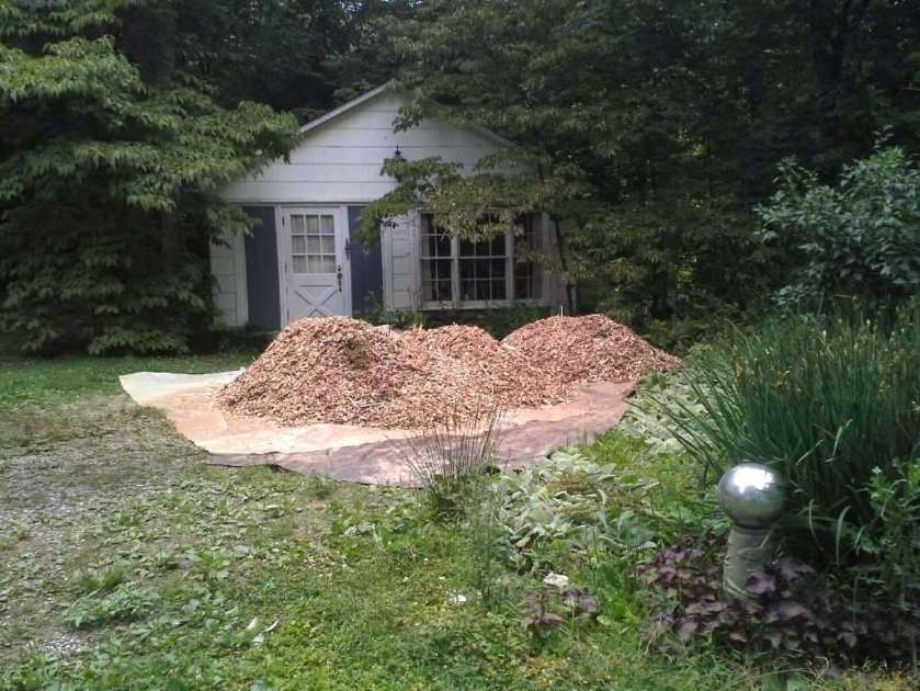 We have plans for these oak chips.