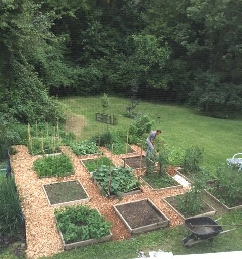 We would have to find a space near the garden for the green house. The smallest one would fit in one of the squares.