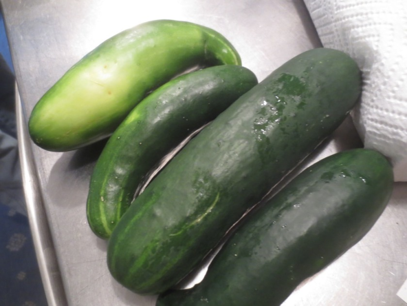 We even eat the funky shaped cucumbers.