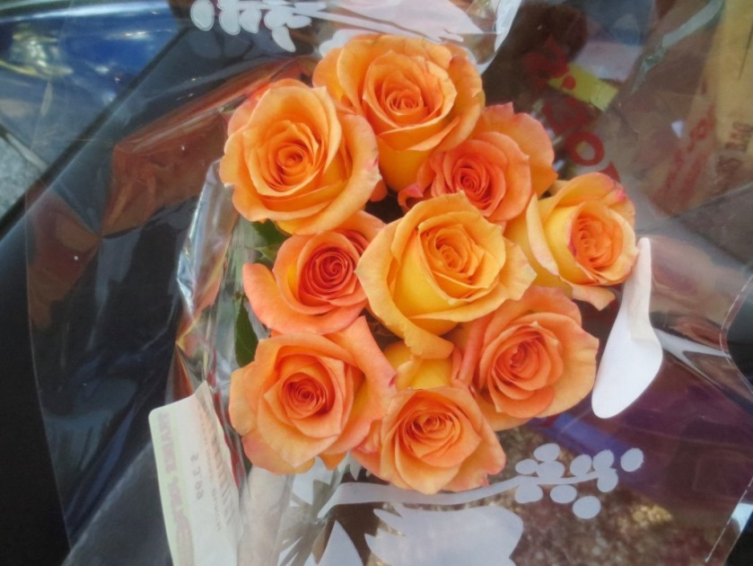 These apricot roses seemed very cheery.
