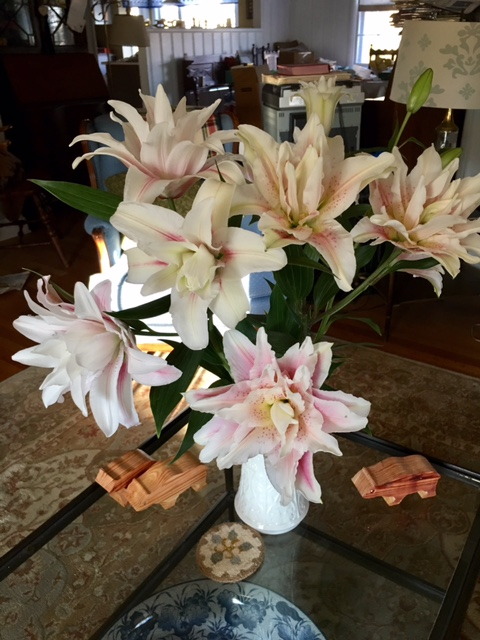 These double lilies are large and fantastic without the colored stamen that plague other lilies.