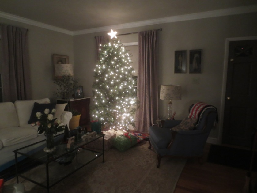 The tree is all lit up but still without ornaments.