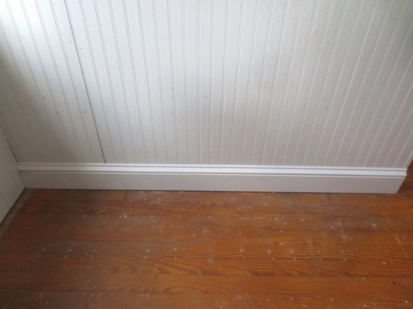 The baseboard still gets some shoe molding along the floor.