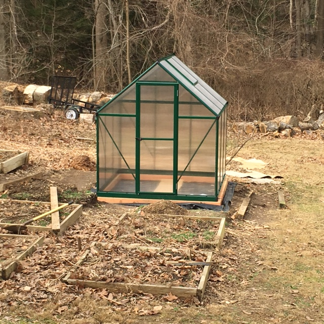 Charlie's 6' by 6' greenhouse.